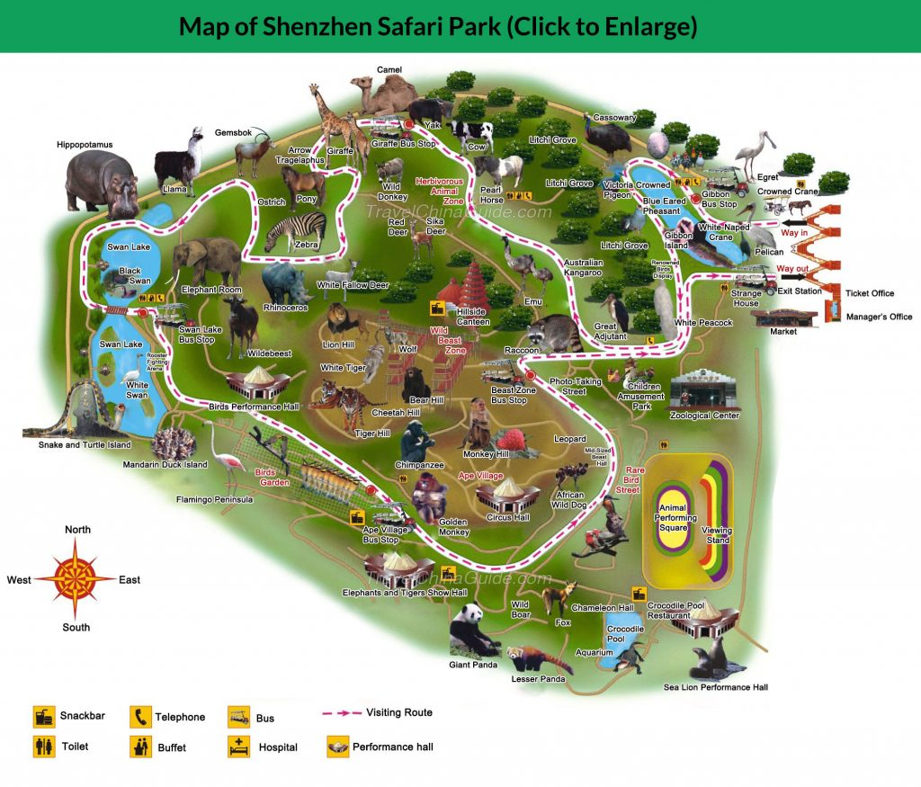 shenzhen-safari-park
